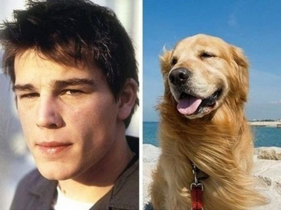 Josh Hartnett and Golden Retriever