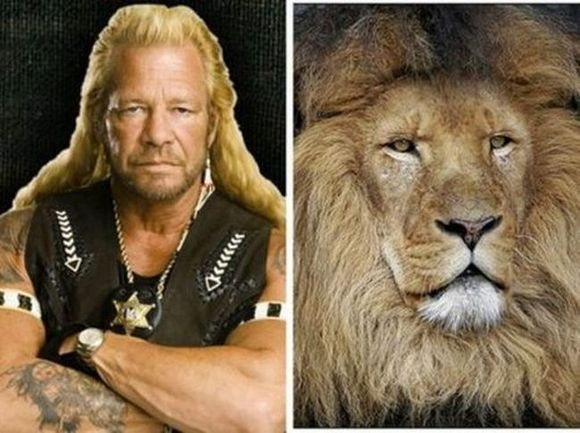 Dog Bounty Hunter look like  Lion