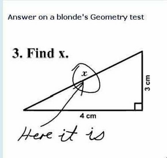 answer on a blonde's geometry test