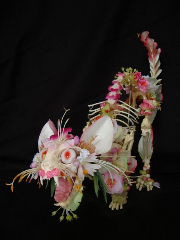 Cat skeleton decorated with flowers