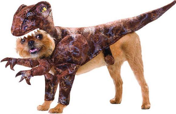 t rex halloween dog costume