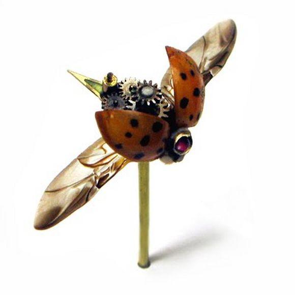 mechanic ladybug insect