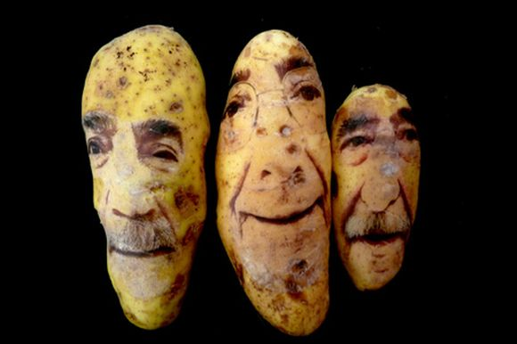 potatoportraits05