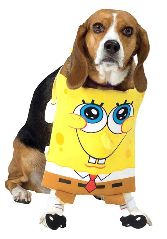 Dog Costumes Inspired by Movies
