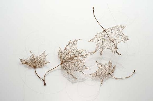 Human Hair into Delicate Leaves