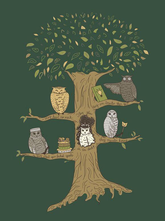 owl23