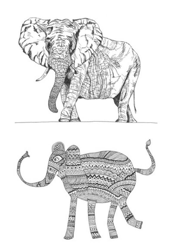 elephant20