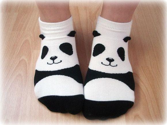 panda20