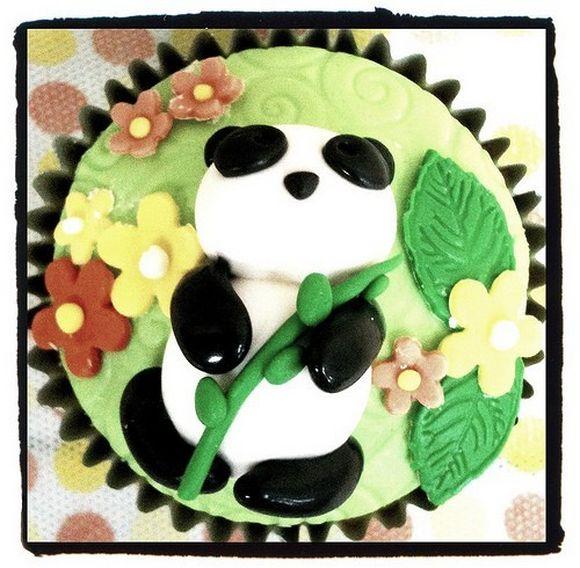panda23