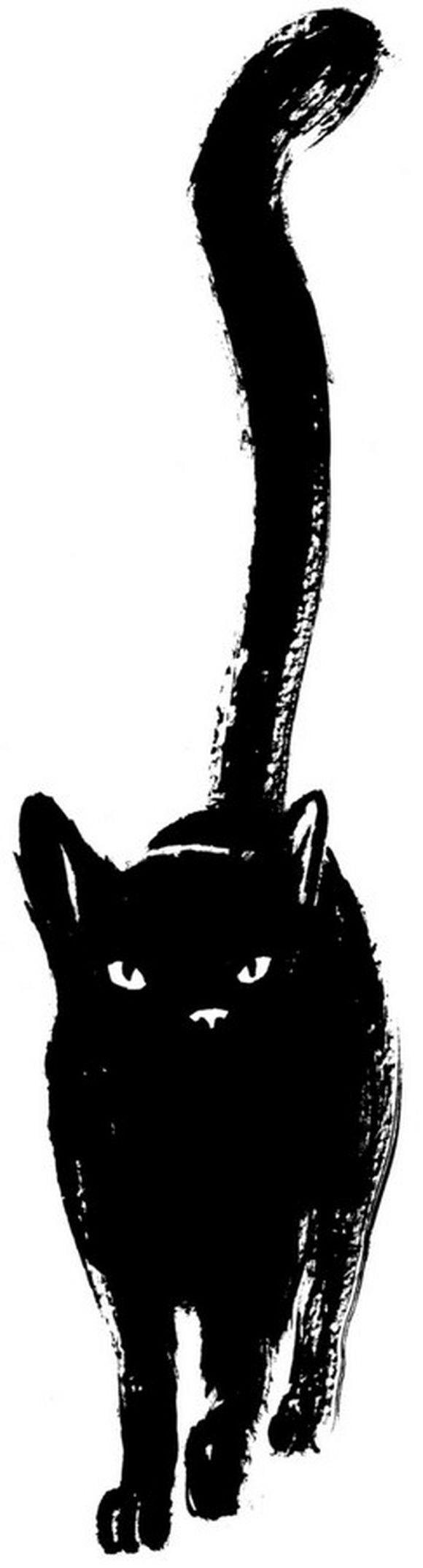 blackcat23