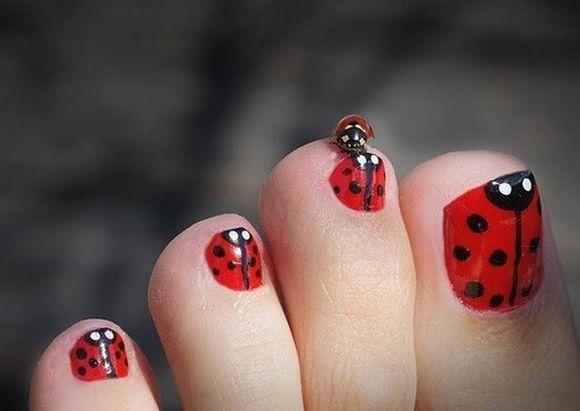 ladybug17