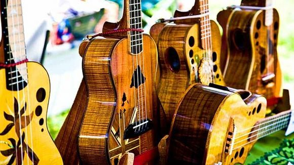 Hawaii guitars