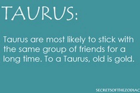 taurus12