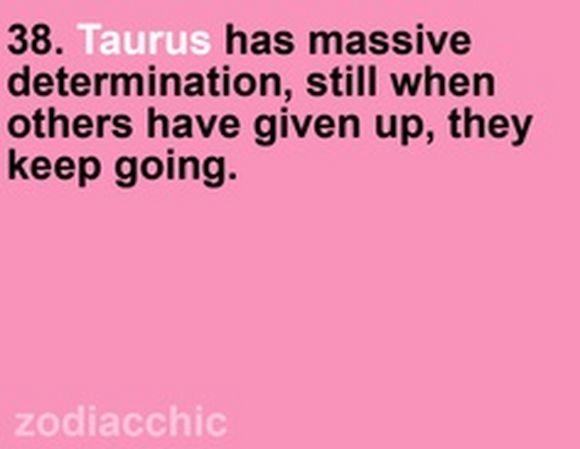 taurus6