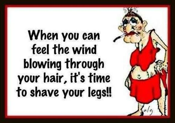 when you can feel the wind blowing through your hair it's time to shave your legs