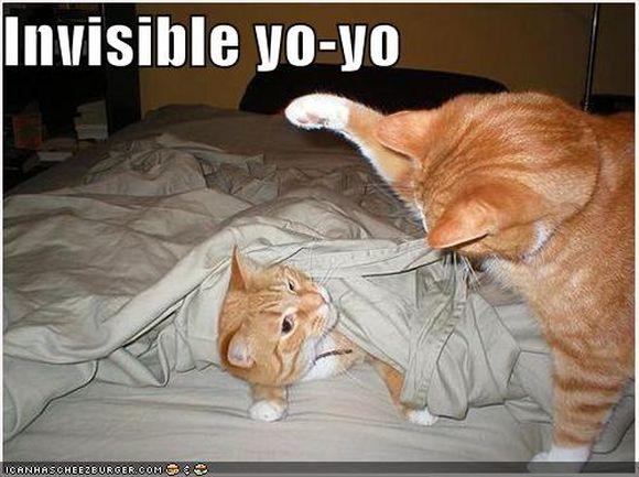 invisible3