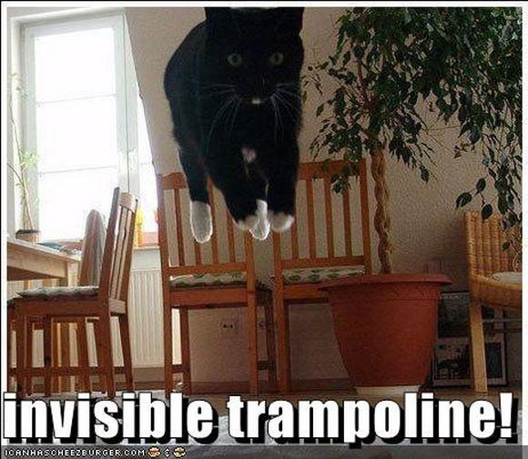 invisible4