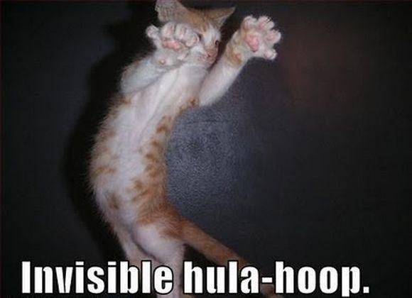 invisible6