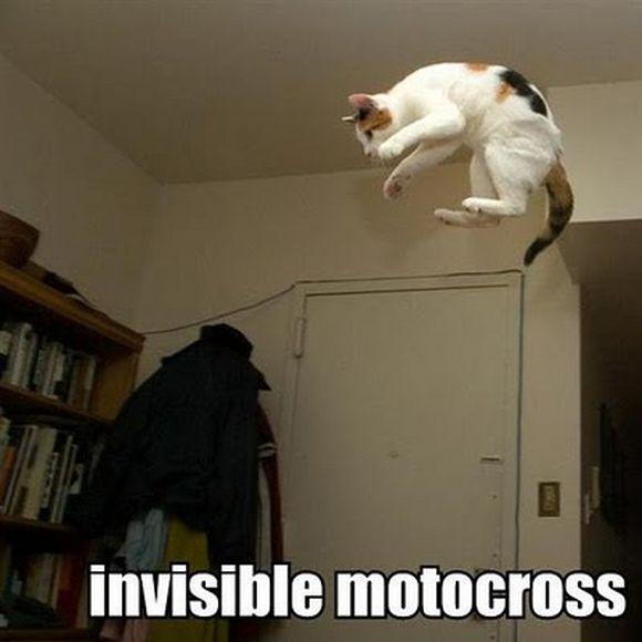 invisible7