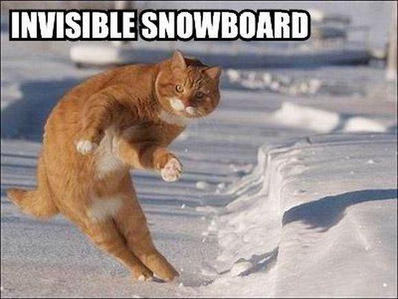 invisible9