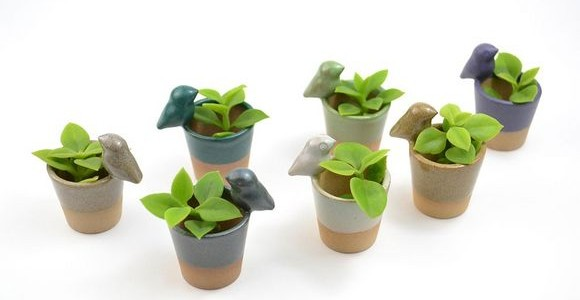 Ceramic planters by Cumbuca Chic