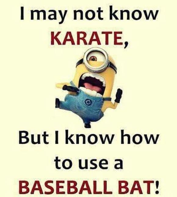 karate minion