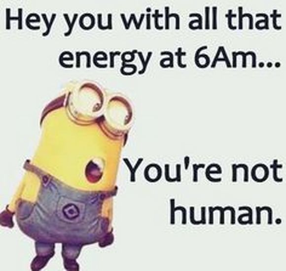 minion early in the morning