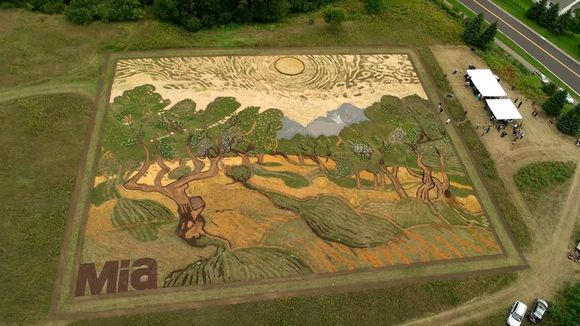 Van Gogh crop-art