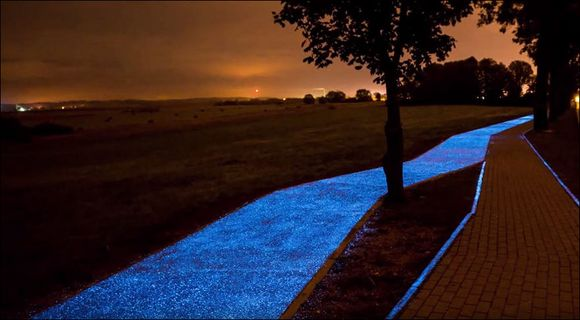 Gorgeous glowing bike path in Poland