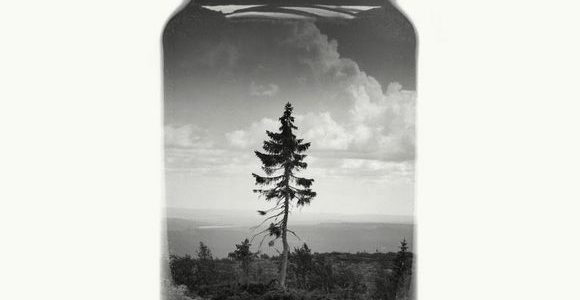 Bottled Finnish landscapes by Christoffer Relander